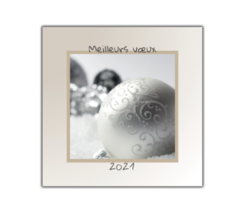 1171-boules-noel-blanches