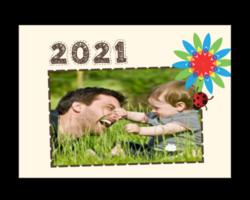 1225-coccinelle