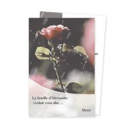 1468-rose-pluie