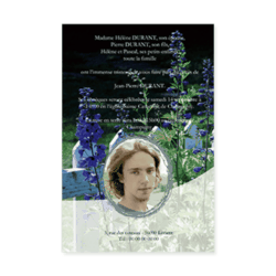 1707-fleurs-bleues