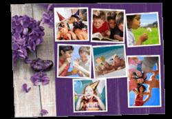 2019-hortensias-violet
