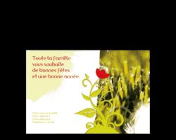 248-nature-fleur-rouge