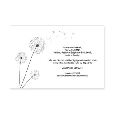 Carte De Remerciements Deces Personnalisable Aigrettes Pissenlit