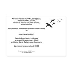2961-envol-oiseaux