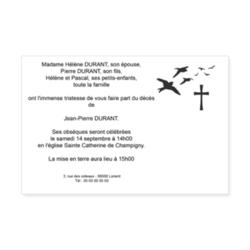 2979-envol-d-oiseaux-croix