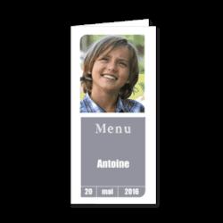 3626-moderne-gris-menu