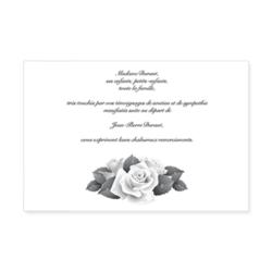 972-classique-rose