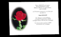 1779-classique-rose